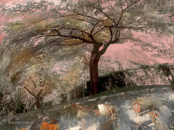 Pozuelo Autumn Art Print