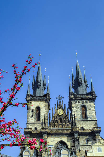 Photograph - Prague In The Spring by Brenda Kean