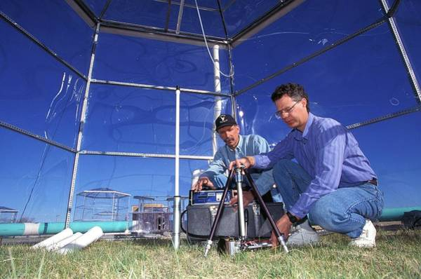 Ar Photograph - Prairie Grass Photosynthesis Research by Scott Bauer/us Department Of Agriculture