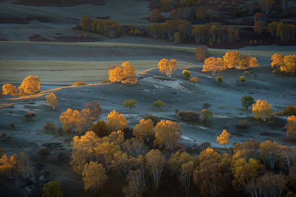 Chinese Photograph - Prairie Light by C. Mei