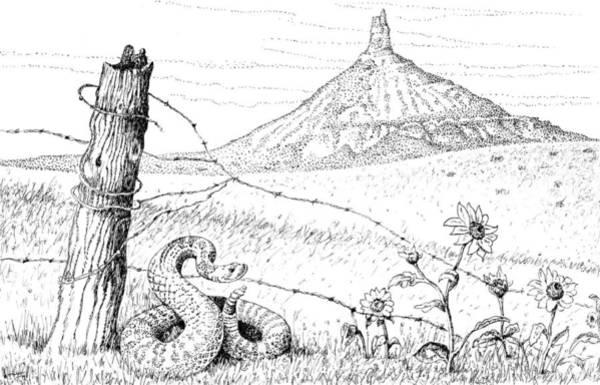 Prairie Rattler Art Print