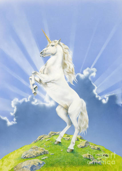 Unicorn Digital Art - Prancing Unicorn by MGL Meiklejohn Graphics Licensing