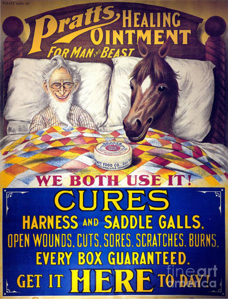 Photograph - Pratts Healing Ointment by Science Source