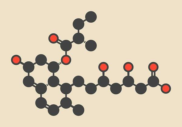 Cardiovascular Disease Wall Art - Photograph - Pravastatin Cholesterol Drug Molecule by Molekuul