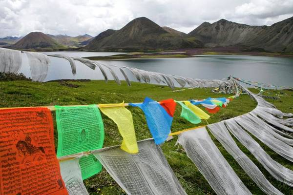 Tibet Photograph - Prayer Flags by Peter Menzel/science Photo Library