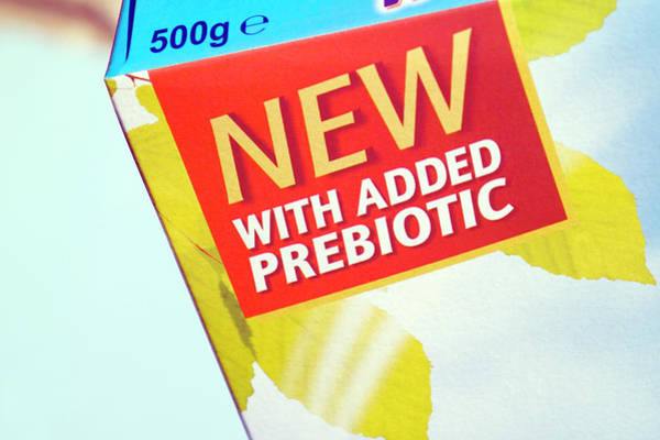 British Food Photograph - Prebiotic Cereal by Paul Rapson/science Photo Library