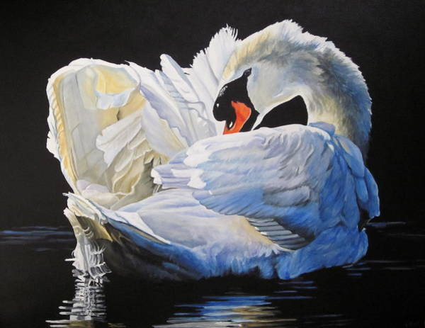 Wall Art - Painting - Preening Swan by Lillian  Bell