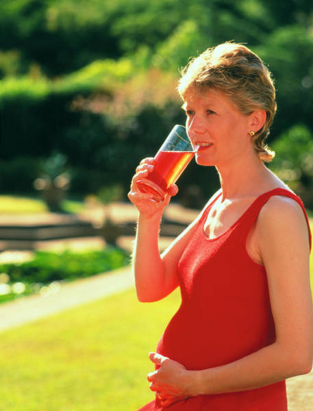 Pregnant Photograph - Pregnant Woman Drinking A Glass Of Juice by Damien Lovegrove/science Photo Library