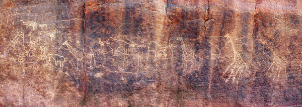 Petroglyph Photograph - Prehistoric Petroglyphs by David Parker/science Photo Library