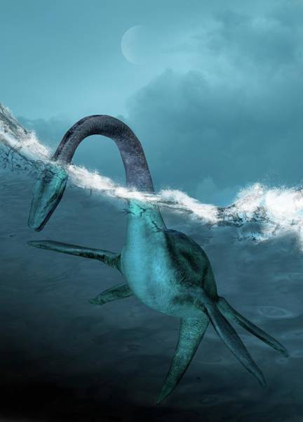 Prehistory Photograph - Prehistoric Sea Creature by Victor Habbick Visions