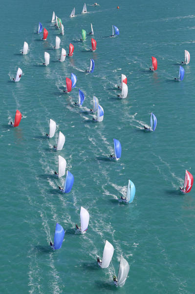 Photograph - Premier Regatta by Steven Lapkin
