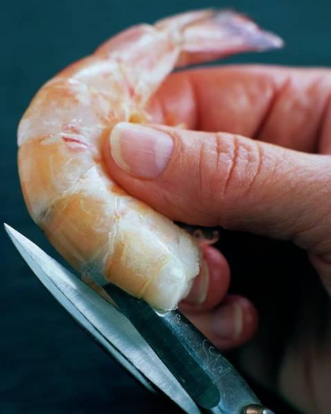 Seafood Photograph - Preparing Shrimp by Romulo Yanes