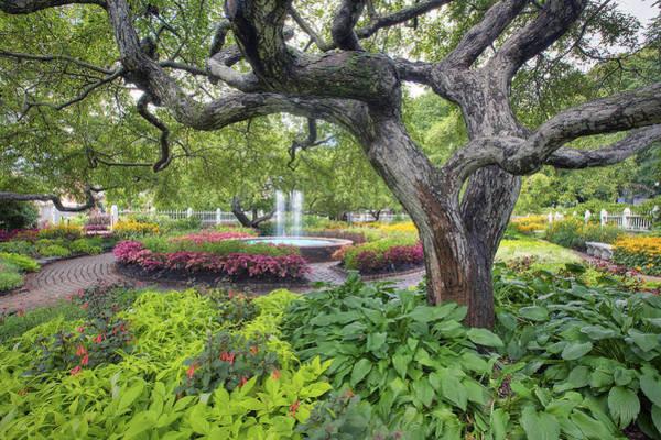 Wall Art - Photograph - Prescott Garden by Eric Gendron