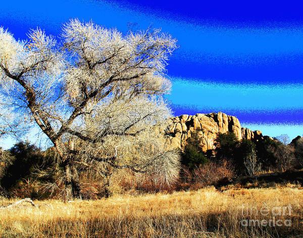 Photograph - Prescott Image by Larry Oskin