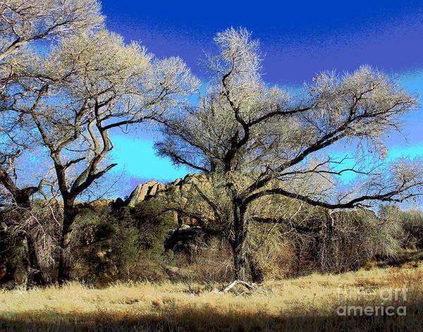 Photograph - Prescott Mountains by Larry Oskin