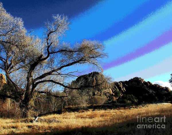 Photograph - Prescott Tree by Larry Oskin