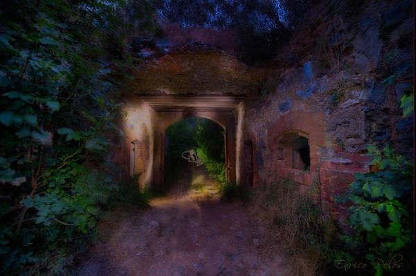 Photograph - Presenze ... Al Forte Abbandonato Di Rocca Liverna by Enrico Pelos