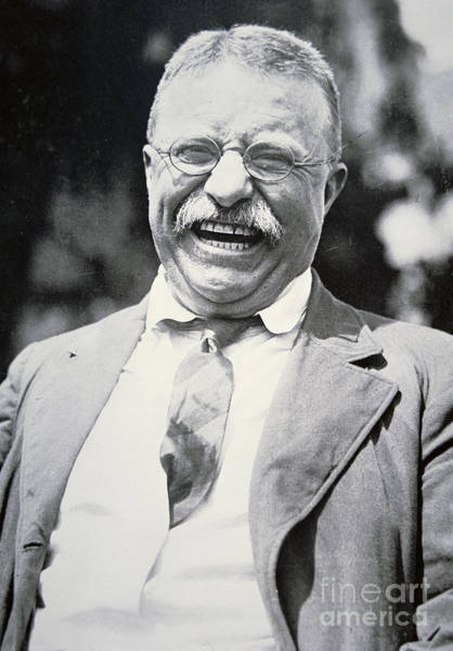 Moustache Photograph - President Theodore Roosevelt by American Photographer