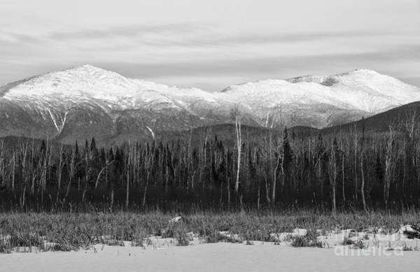 Photograph - Presidential Range - Pondicherry Wildlife Refuge New Hampshire by Erin Paul Donovan