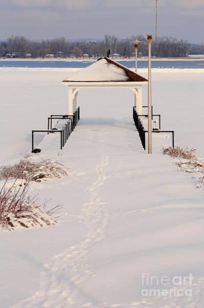 Southern Ontario Photograph - Presquile Provincial Park In Winter by Louise Heusinkveld