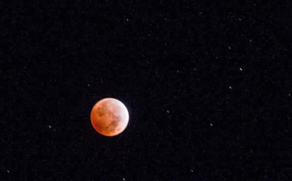 Camera Raw Photograph - Pretty Face On A Blood Moon by Carolina Liechtenstein