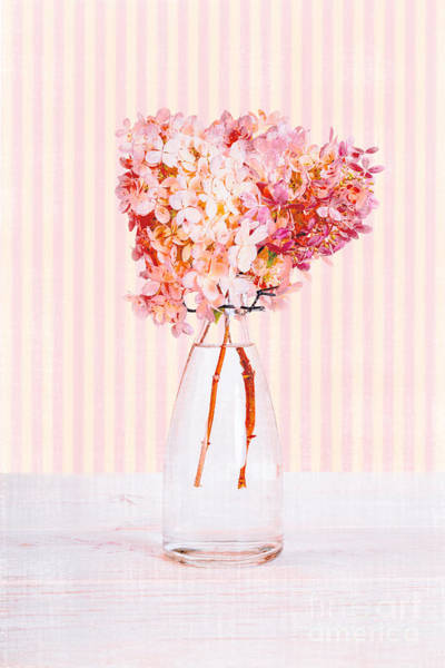 Girly Photograph - Pretty In Pink Flowers by Edward Fielding