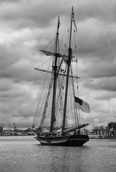 Photograph - Pride Of Baltimore by Guy Whiteley