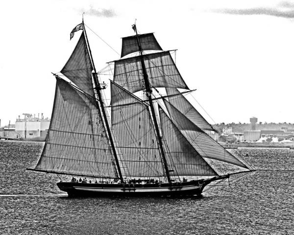 Photograph - Pride Of Baltimore II Black And White by Bill Swartwout Photography