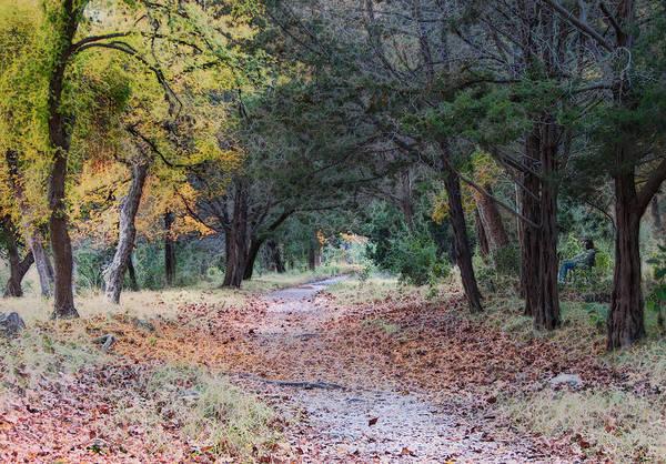 Traditional Home Digital Art - Primrose Path Ramble by Wendy J St Christopher