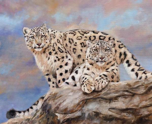 Snow Leopard Wall Art - Painting - Princes Of The Peaks by David Stribbling