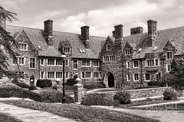 Photograph - Princeton University by Olivier Le Queinec