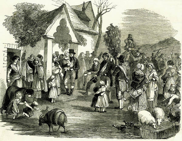 Wall Art - Drawing - Procession Of The Wren Bush And Wren by  Illustrated London News Ltd/Mar