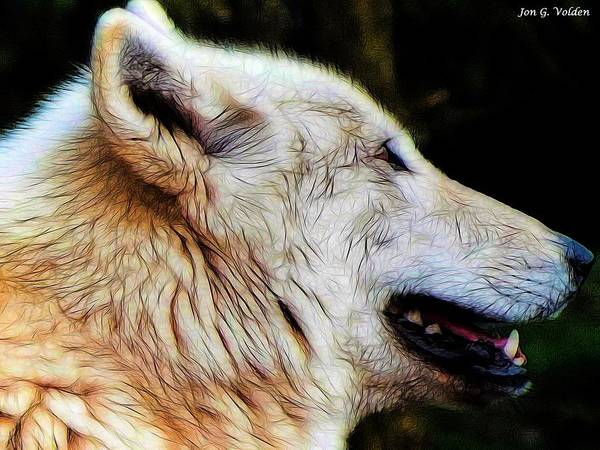 Painting - Profile Of A Wolf by Jon Volden