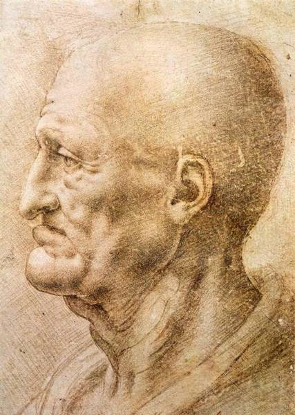 Galleria Painting - Profile Of An Old Man by Leonardo da Vinci