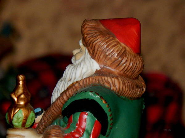 Photograph - Profile Of St Nick by Wild Thing