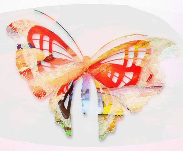 Digital Art - Profound Thought Butterfly by Catherine Lott