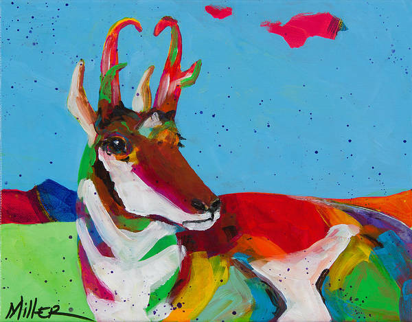 Colorado Wildlife Wall Art - Painting - Pronghorn Pretty by Tracy Miller