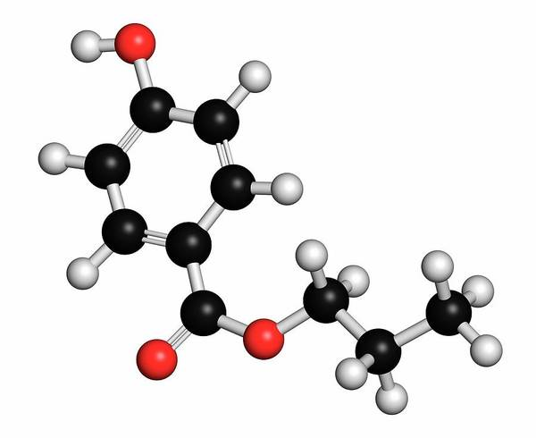 Preservative Wall Art - Photograph - Propylparaben Preservative Molecule by Molekuul/science Photo Library