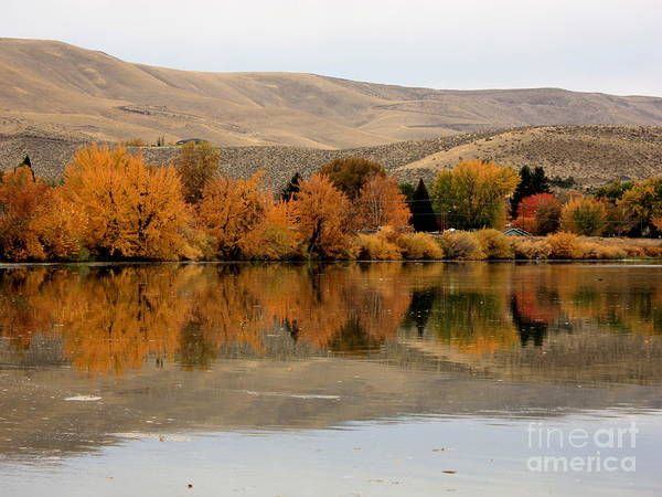 Photograph - Prosser Autumn Reflection by Carol Groenen