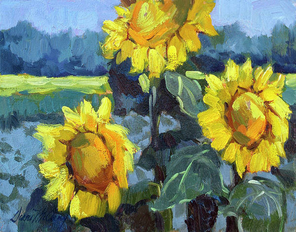 Desert Scene Painting - Provence Sunflower Trio by Diane McClary