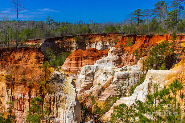 Photograph - Providence Canyon by Heather Roper