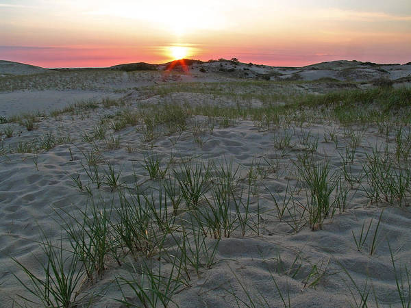 Cape Cod Sunset Photograph - Provinceland Dunes by Juergen Roth