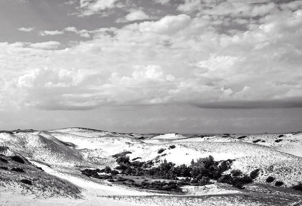 Photograph - Provincelands 2014 by Frank Winters