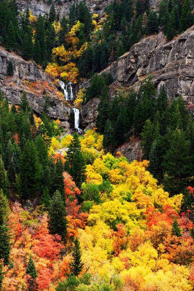Photograph - Provo Canyon Falls by TL  Mair