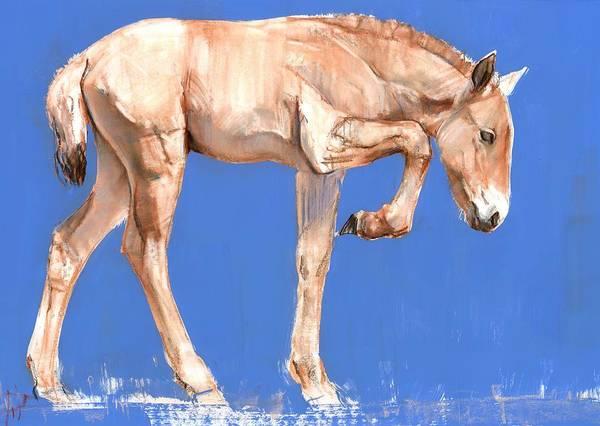 Foal Photograph - Przewalski Foal, 2012, Mixed Media On Paper by Mark Adlington