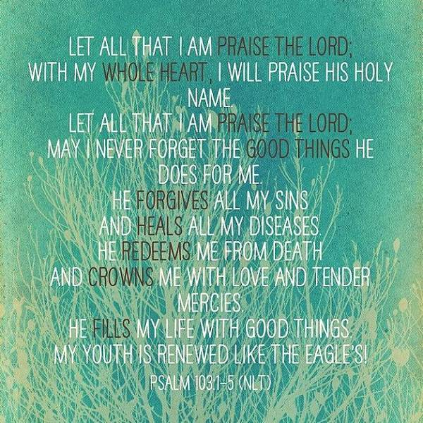 Wall Art - Photograph - Psalm 103-1:5 #bible #scripture by Diana Tuquero-gustafson