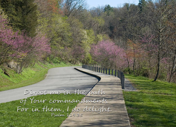 Photograph - Psalm 119 Direct Me In The Path by Denise Beverly