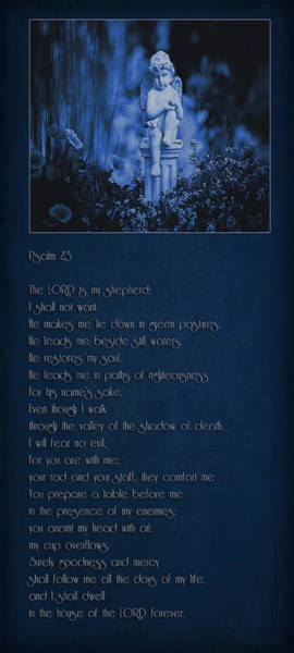 Psalms Photograph - Psalm 23 - The Lord Is My Shepherd... by Maria Angelica Maira