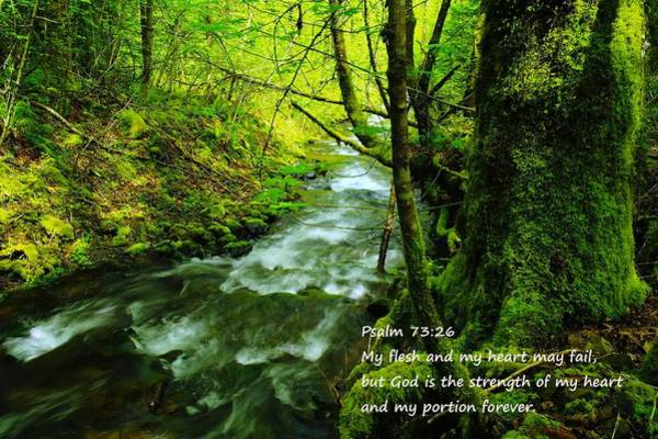 Bible Quotes Photograph - Psalms 73-26 by Jeff Swan