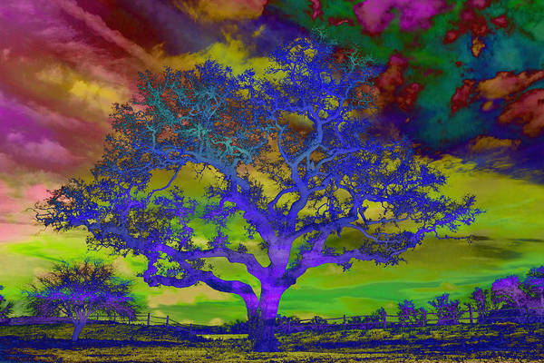 Photograph - Psychedelic Sentinel Blue by Jemmy Archer